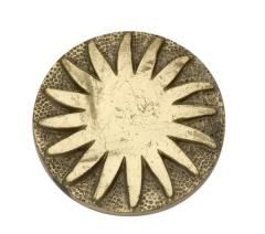 rosette sun (2)